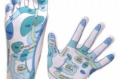 reflexologie-pied-et-mains